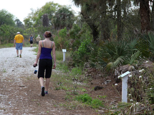 Visitors strolling down the coastal habitat trail through natural Florida will find signs identifying plants and trees and places to sit and enjoy the scenery.