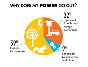 This chart shows the typical causes of power outages that customers experience.