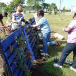 Packing recycled pallets with dirt and plants, Beverly Morgan, Tracy Mortellaro and Rosa Webster create a vertical garden.