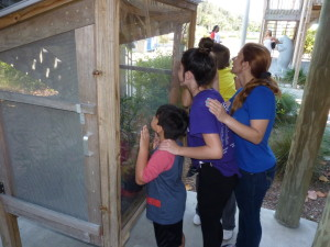 A family checks out the milkweed box at Tampa Electric's Manatee Viewing Center.