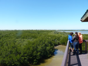 The 50-foot wildlife observation tower is the site of several off-season upgrades.