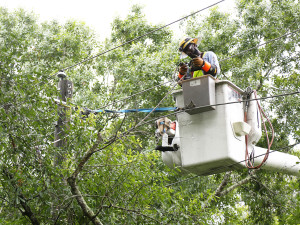 Lineman Anthony Faison Jr., with Tampa Electric's Western Service Area, makes safety his top priority as he works to restore electric service.