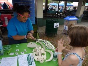 Yasmin McComber, left, from Tampa Electric's Manatee Viewing Center, shares her substantial knowledge about the Florida manatee and its habitat with a young EcoFest 2017 visitor.