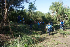 TECO team members and other volunteers hard at work along McKay Bay.